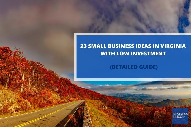 23 Small Business Ideas In Virginia With Low Investment In 2021