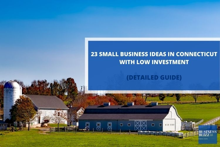 23 Small Businesses in Connecticut With Low Investment In 2021