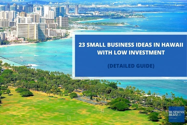23 Small Business Ideas In Hawaii With Low Investment In 2021
