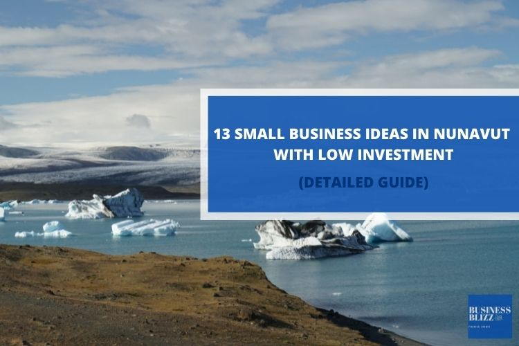 13 Small Business Ideas in Nunavut With Low Investment In 2021